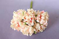 Хризантема пышная 60 шт/уп. диаметр около 3,5 см диаметр кремово-розового цвета оптом