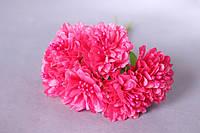 Цветы астры 72 шт. диаметр 3-3.5 см диаметр, малинового, ярко-розового цвета оптом