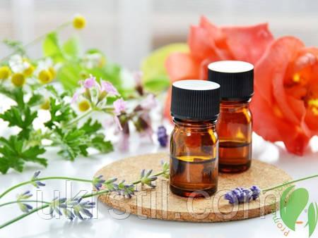 Польза растительных экстрактов для шевелюры