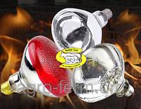 Лампа инфракрасная зеркальная (пресованоое стекло) Red 250Вт