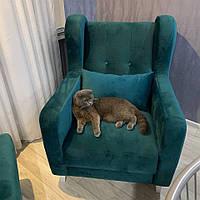 Кресло Чарли Грейс на деревянных ножках, фото 1