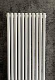 Вертикальний дизайнерський радіатор Praktikum 1 1800/387 Betatherm 8-10 м. кв., фото 3