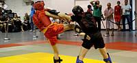 Школы боевых искусств
