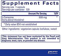 L-карнозин, l-Carnosine, Pure Encapsulations, 60 капсул, фото 2