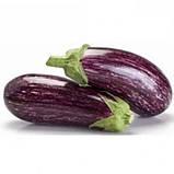Лейре(Leire F1) насіння баклажан Rijk Zwaan, Голландія 100 шт, фото 2