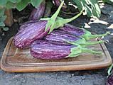 Лейре(Leire F1) насіння баклажан Rijk Zwaan, Голландія 100 шт, фото 5