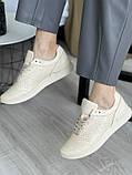 Женские кроссовки кожаные весна/осень бежевые, фото 3