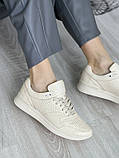 Женские кроссовки кожаные весна/осень бежевые, фото 6