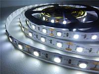 Светодиодная лента SMD 5050 (60 LED/m) IP20 Белый Standart