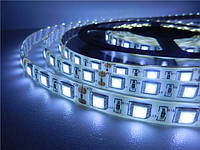 Светодиодная лента SMD 5050 (60 LED/m) IP54 Белый Standart