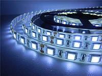 Светодиодная лента SMD 5050 60 LED/m IP65 Белый Standart