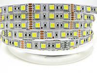 Светодиодная лента  SMD 5050 60 диодов/м двойная цветная температура