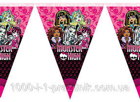 Флажки Monster high