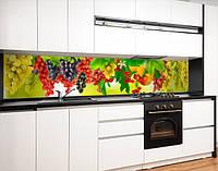 Кухонна панель на стіну жорстка виноградні грона, з двостороннім скотчем 62 х 205 см