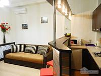 Квартира люкс у метро Пушкинская, 2х-комнатная (76247)