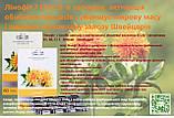 Линофит с линолевой кислотой  и витаминами B, C и E Швейцария, фото 3