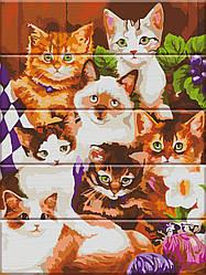 Картина по номерам Кошенята, 30x40 см., Art Story