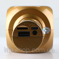 Караоке Микрофон Wster WS-1816 Матовый Золотой, фото 3