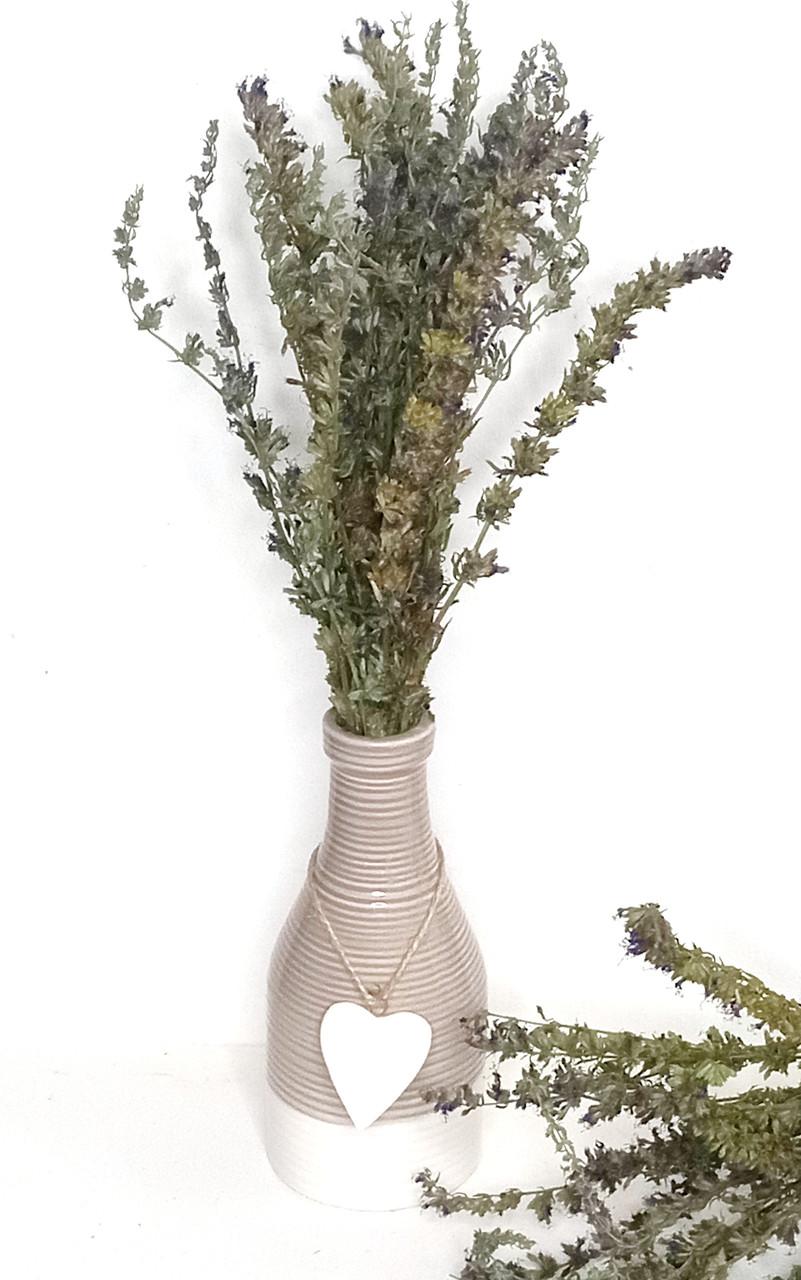 Сухоцвіт ісопу. Трави для свічок, саші, мила.