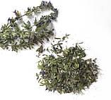 Сухоцвіт ісопу. Трави для свічок, саші, мила., фото 2