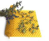 Сухоцвіт ісопу. Трави для свічок, саші, мила., фото 3