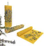 Сухоцвіт ісопу. Трави для свічок, саші, мила., фото 4