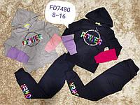 Трикотажный костюм-двойка для девочек F&D, Артикул: FD7480, 8-16 лет