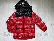 Куртки зимние на мальчика оптом, Nature, 10-16 рр, фото 3