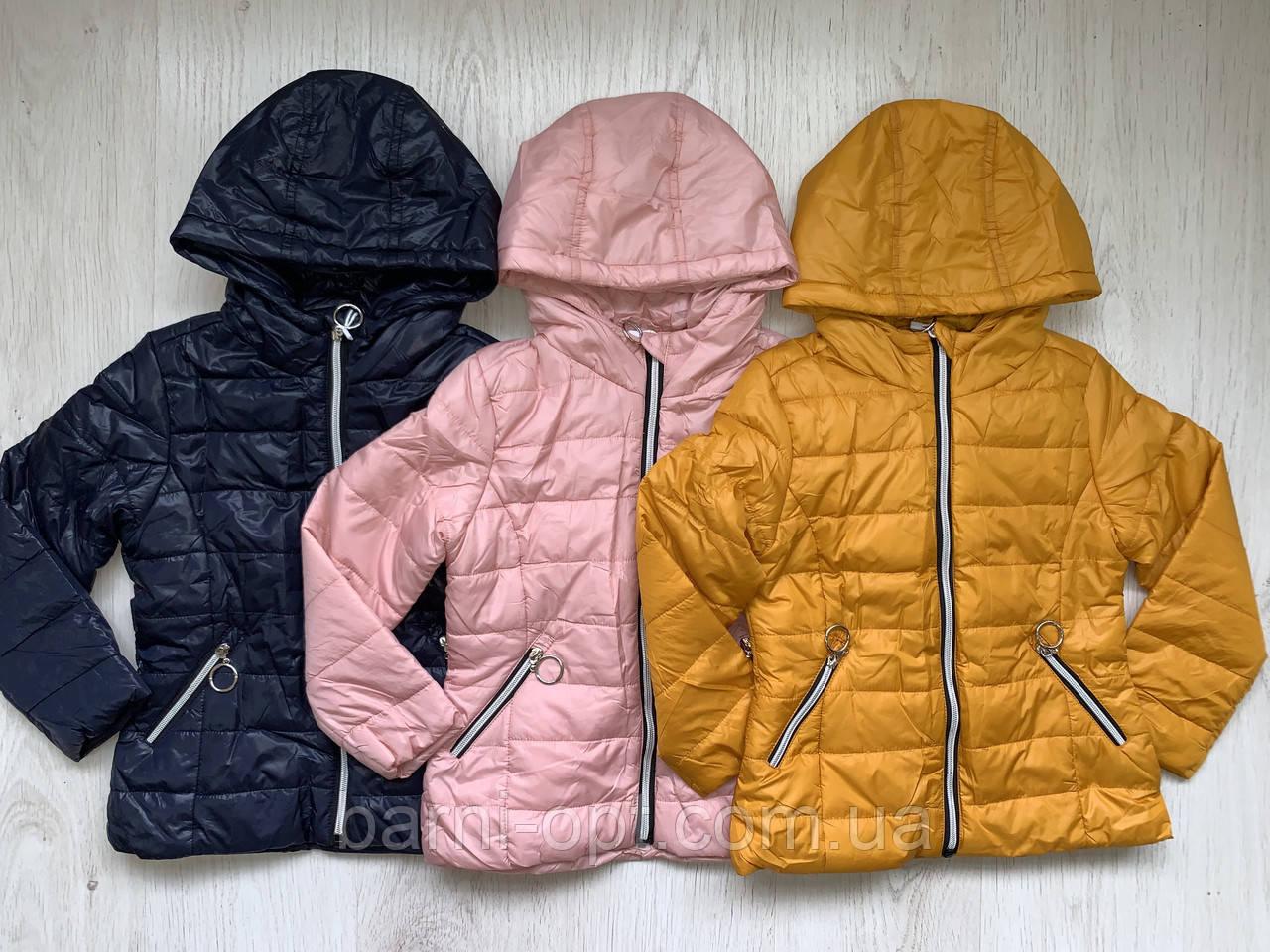 Куртки демисезонные на девочек оптом, Nature, 2-8 рр