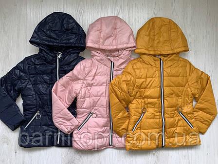 Куртки демисезонные на девочек оптом, Nature, 2-8 рр, фото 2