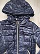 Куртки демисезонные на девочек оптом, Nature, 2-8 рр, фото 3