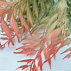Куст латексный 39 см, оливково-красный, фото 2
