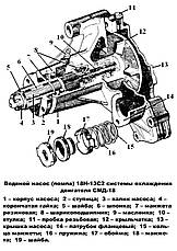 Насос водяной (помпа) СМД-18, ДТ-75, фото 3