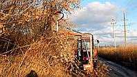 Предоставляем услугу механической обрезке деревьев лесополос и посадок