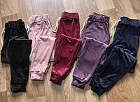 Жіночі велюрові спортивні штани НОРМА (р-р 44-52) пр-во Україна. Купити оптом в Одесі