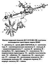 Насос водяной (помпа) ЮМЗ, Д-65, КапРемонт, фото 3