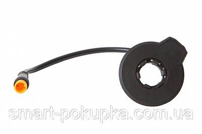 Система АП CDPAS Q12ML, 12 магнитов, влагозащищенные разъемы, длина 250 mm