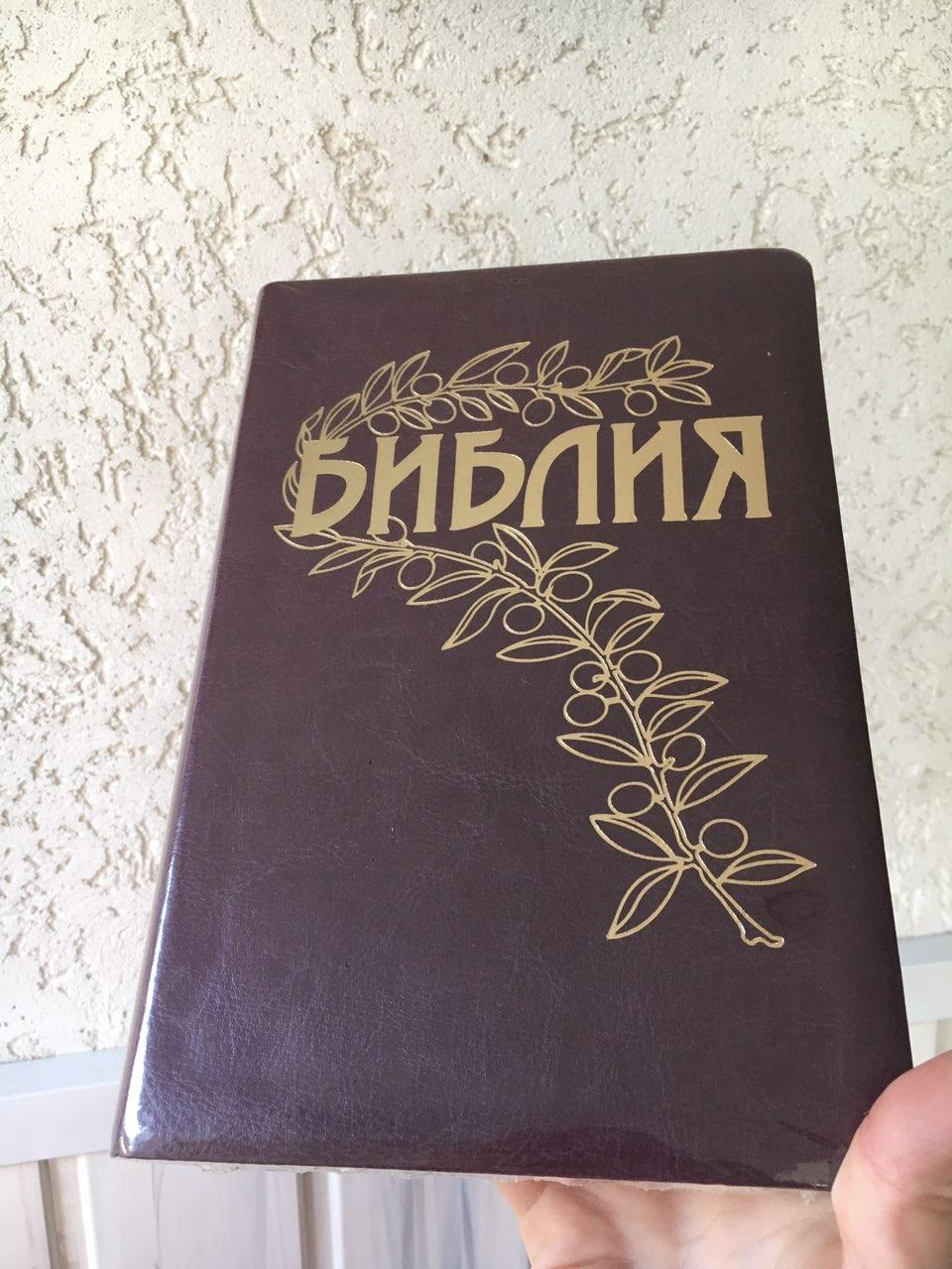 Библия коричневого цвета с веточкой, 14х22 см, с замочком, без индексов, золотой срез