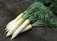 Семена редьки среднеранний гибрид Дайкон Эрли Лонг Вайт (Мино) F1, NongWoo Bio (Корея), 10000 семян