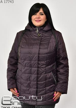 Демисезонная женская куртка в большом размере, шоколад, размеры: 56.58.60.62.64.66, фото 2
