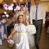 Организация и проведение Свадебного Торжества