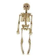 """Декор на Хэллоуин """"Скелет"""", 37 см."""