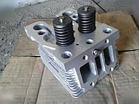 Головка блока цилиндров Д-144,Д-21 (Т-40,Т-25,Т-16)