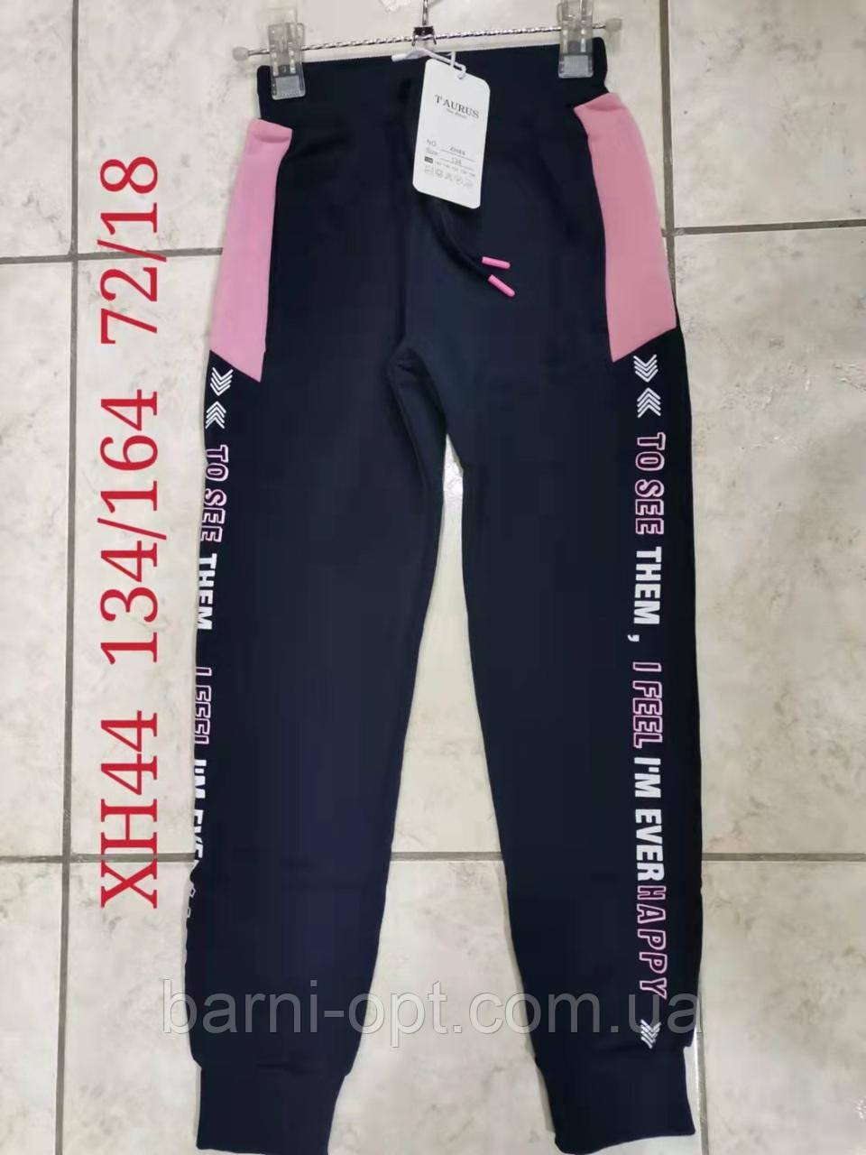 Утеплені спортивні штани для дівчаток оптом, Taurus, 134-164 рр