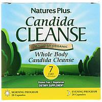 Очищение от кандиды за 7 дней, Candida Cleanse, Natures Plus, 56 капсул
