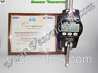 Крановые весы ВК ЗЕВС I (300 кг)