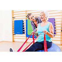 Лента-эспандер для спорта и реабилитации 4FIZJO Flat Band 30 м 9-11 кг, фото 3