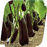 Семена баклажана Итака 1000 сем.Seminis.