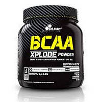 BCAA Xplode 500 g fruit punch