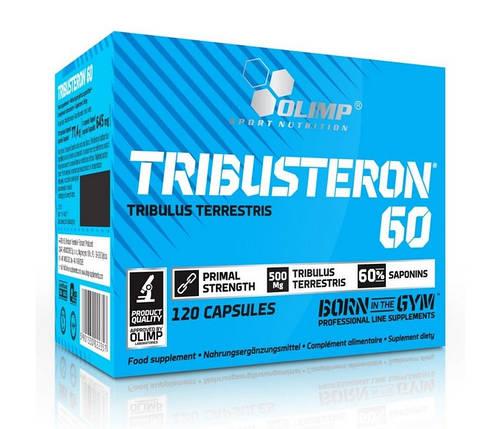 Тестостероновый бустер Olimp Labs Tribusteron 60 120 капсул, фото 2
